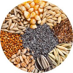 Enkevoudige Zaden - Granen & Produkten