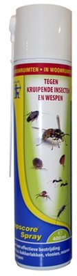 Topscore kruipende insect/wesp
