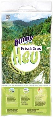 Bunny nature vers gras hooi