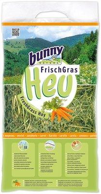 Bunny nature vers gras hooi met wortel