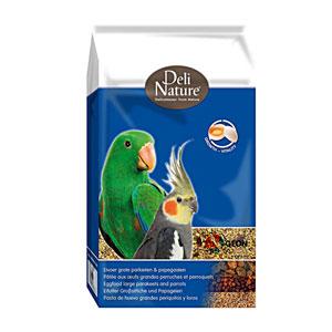 DN Eivoer gropar-papegaai 10