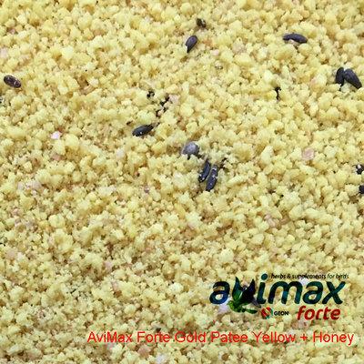 AviMax Forte Gold Patee Yellow +Honey 10 kg