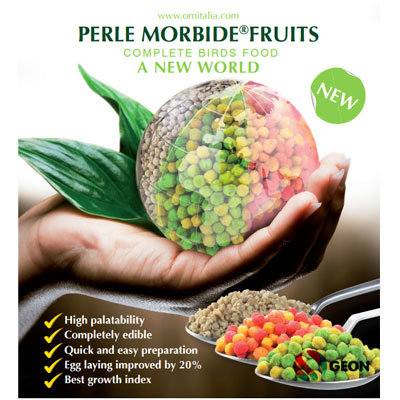 Perle Morbide Fruits Bianche 9 kg.